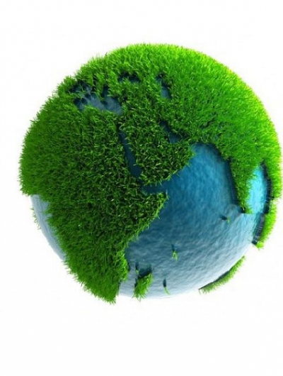 Sustainability and Environmental Awareness